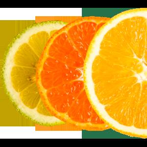 Ein Mix aus Zitrusfrüchten (Limone, Clementine und Orange)