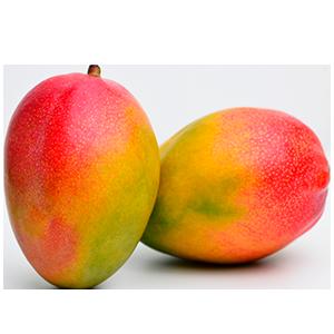 Sizilianische Bio-Mango, reif und saftig