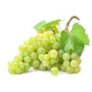 Bio-Weintrauben aus Sizilien, sonnengereift und süß